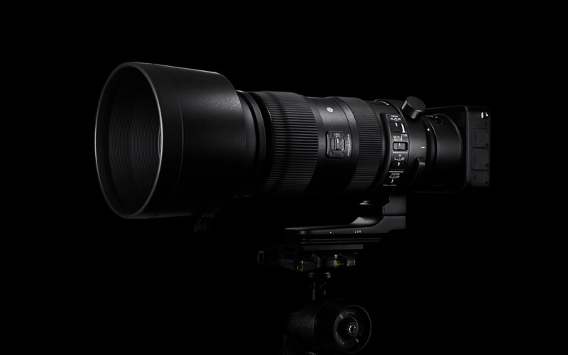 SIGMA 60-600mm F4.5-6.3 DG OS HSM | Sports